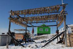 "Gypsy Living Traveling In Style| Serafini Amelia| ""Gypsies Travel"" Greenland-Oqaatsut / Rodebay"