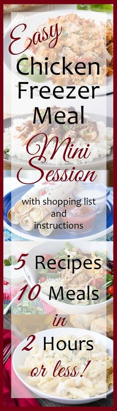 Chicken Freezer Meal Mini Session long pin with graphics