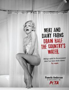 Pamela Anderson lo PETA