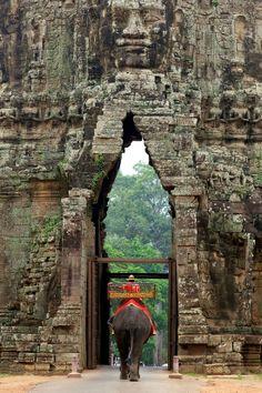 Elephant Passing Gate At Angkor Thom Angkor Wat, Cambodia