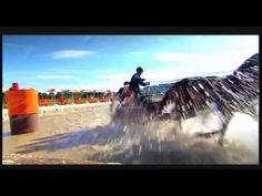Trailer 2014 Alltech FEI World Equestrian Games in Normandy