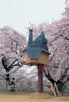 A one-legged teahouse suspended amid cherry trees in the Japanese mountains by architect Terunobu Fujimori.