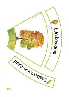 Teaching Science, Teaching Ideas, Montessori, German, School, Tree Planting, Physical Science, Schools, Kids Learning