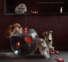 fishers-3 by Elena Eremina