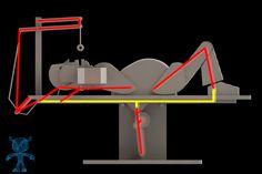 Donut Sit-ups Wooden Toy - SketchUp,Parasolid,SOLIDWORKS,OBJ,Autodesk 3ds Max,STL,STEP / IGES - 3D CAD model - GrabCAD