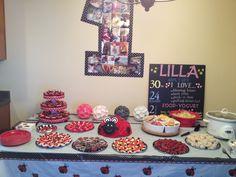 Ladybug girl birthday party :)
