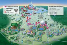 Walt Disney World Marathons, Disney Half Marathon