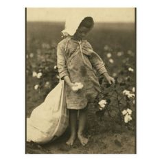 Credit Card | Zazzle.com Vintage Pictures, Old Pictures, Old Photos, Lewis Wickes Hine, Thelma Et Louise, Picking Cotton, Dust Bowl, Cotton Fields, Interesting History