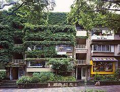 ツタが印象的だった同潤会・青山アパートメント