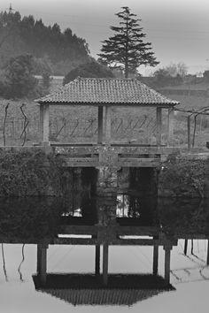 Bridges by Geraldo Dias on 500px