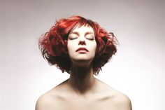 L'ANZA's latest Bob Technical Collection that will relate to practical application and techniques of the classic Bob.