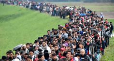 Some 1.2 million people sought asylum in the European Union last year, just slightly lower than in 2015 as conflict and upheaval in Syria and elsewhere keep driving people from their homes, EU figures