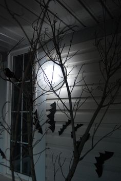 Halloween full moon: All I did was take an embroidery hoop, painted it white, put in a white pillowcase, trimmed it to size and hung it up with fishing line. Behind the embroidery hoop, I put up one of those stick-on LED touch lights that you can buy for your closet (I got mine at the dollar store).