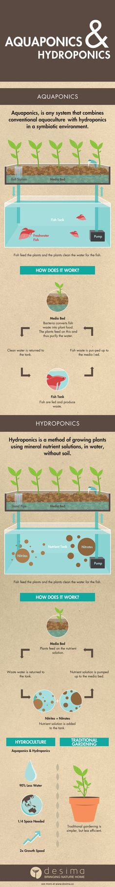aquaponics hyrdroponics infographic