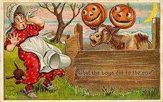 Halloween 1909 Cow Jack o Lanterns on Horns Scares Lady Antique Vintage Postcard…