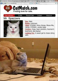 Funny pics, hilariousness, jokes funny, funny photos, funny cats, funny dogs …For more humorous quotes and funny pictures visit www.bestfunnyjokes4u.com