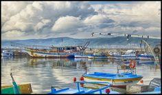 Ziua Mondială a Pescuitului: țările riverane Mării Negre se reunesc pentru a asigura sustenabilitatea resurselor marine - Glasul.info Bulgaria