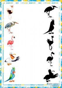 Animal Activities For Kids, Activity Sheets For Kids, Montessori Activities, Infant Activities, Baby Activites, Animal Movement, Kindergarten Songs, Bird Theme, Preschool Printables