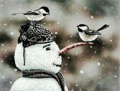 Echt schööööön , als ob sich die kleinen Kohlmeisen und der hübsche Schneemann unterhalten.  Tolle Aufnahme, da gehört auch Glück dazu, just in dem Moment ...