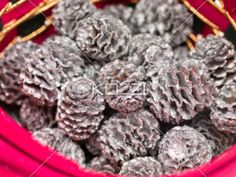 Painted Pinecones in Basket - Piles of painted pinecones in a basket.