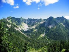 Olympic National Park in Washington State.  Washington State has the longest undeveloped coastline in the lower 48 states--giving it World Heritage status.