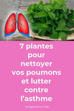 What Is Climate, Climate Change, Allergie Pollen, Le Pollen, Pollen Allergies, Global Warming, Souffle, Health Fitness, Outdoors