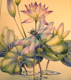 IMG_9320 Dragonflies…How to Paint Them and What They Signify! A New Art Class By Jody Bergsma