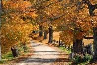Apple Hill, California