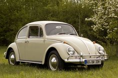 VW Käfer (1966)