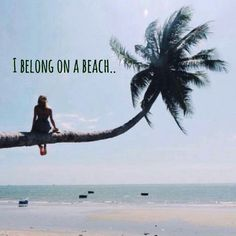 I belong on a beach... woman on beach, sitting on palm tree. Original source…