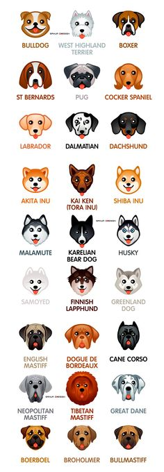 Kawaii dogs on Behance Cute Little Puppies, Cute Dogs And Puppies, Cute Little Animals, Baby Dogs, Cute Animal Memes, Cute Funny Animals, Dog Language, Animals And Pets, Dog Breeds