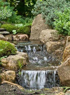 Japanische Gaerten, Impressionen Von Wasser Und Blüten Im Zengarten