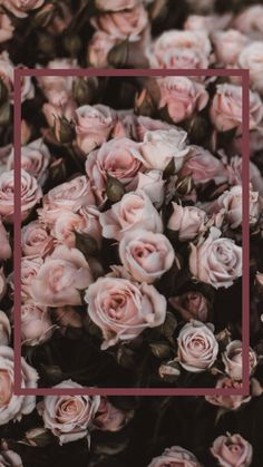 10 Beautiful Big Bunch Of Flowers For Phone Wallpaper Stunning Iphone Wallpapers For Iphone 11 And Iphone Floral Wallpaper Iphone, Iphone Background Wallpaper, Aesthetic Iphone Wallpaper, Flower Wallpaper, Pink Wallpaper, Floral Wallpapers, Rose Background, Phone Backround, Walpaper Iphone
