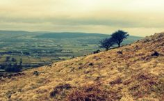 View from Slemish, Ballymena (17th March 2010)