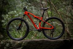 Image result for orbea occam tr