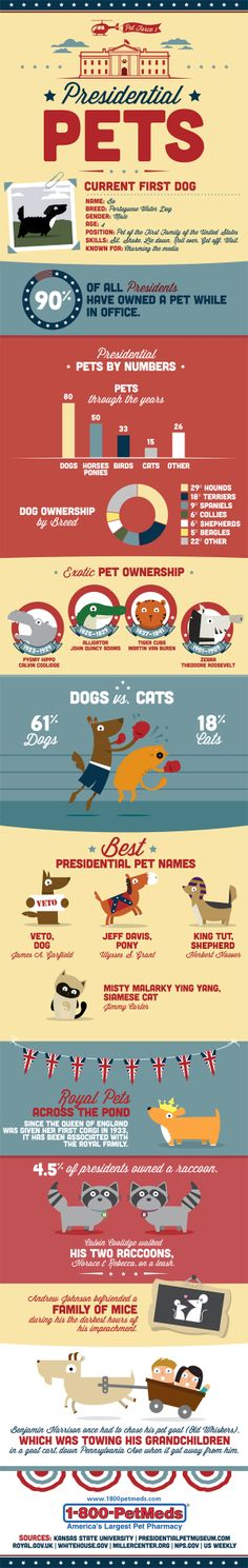 Cool infographic > How Well Do You Know the History of Presidential Pets?