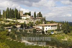 Castello di Verrazzano Vineyard - Greve in Chianti, Tuscany  One of my favorite stops in Italy!