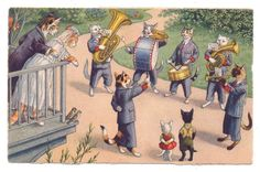 Mainzer Cats - Cat Band Makes Music for Newlyweds on Balcony