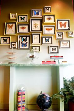 Framed Butterfly Wall Collage collection