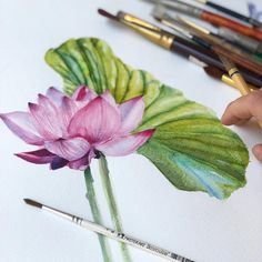 Watercolor lotus painting, Lotus illustration, lotus flower art #lotus #lotuspainting #watercolorflowers #botanicalart #lotusart #flowerart #artwork, #watercolor Watercolor Lotus, Lotus Painting, Watercolor Flowers, Lotus Flower Art, Lotus Art, Botanical Art, Hair Accessories, Illustration, Artwork