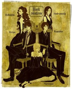 only Bellatrix was evil out of these lot. The Black family were a good house Fanart Harry Potter, Arte Do Harry Potter, Theme Harry Potter, Harry Potter Artwork, Harry Potter Love, Harry Potter Universal, Harry Potter World, Harry Potter Illustrations, Hogwarts