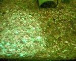мне кажется причина в том что аквариум новый, такое бывает в новых аквариумах из-за повышенного содержания силикатов (вовсе не из-за света) ...