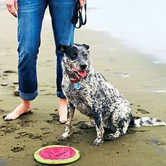 Top 20 beach hotels | Coastal getaways: San Francisco | Sunset.com