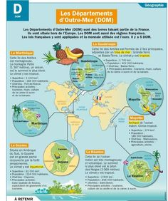 Educational infographic & data visualisation Les Départements d'Outre-Mer (DOM) Infographic Description Parts of France : the French overseas Ap French, Study French, French History, French Class, French Words, French Lessons, French Teaching Resources, Teaching French, How To Speak French