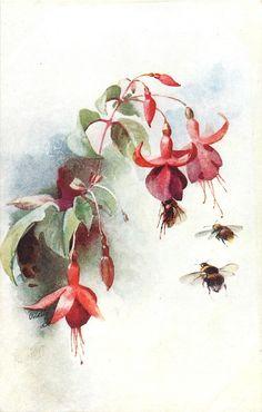 tres flores rojas (fuscias), tres abejas por debajo de ellos, uno aterriza en segunda flor de derecha