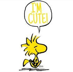 I love ❤️ Woodstock! Snoopy Comics, Bd Comics, Woodstock Bird, Snoopy Und Woodstock, Snoopy Quotes, Cartoon Quotes, Peanuts Quotes, Peanuts Cartoon, Peanuts Snoopy