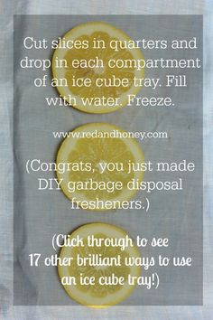 DIY garbage disposal fresheners! [And 17 other genius ice cube tray hacks!]