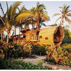 The treehouse gets a refresh for Playa Viva reopening Season 8 on Oct 7th. What's your special occasion?  by @kellysteffey #honeymoon #anniversary #birthday #getaway #getawaytrip #getawayspot #greenhoneymoon #sustainable #boutiquehotel #sustainabledesign #sustainableliving #sustainablewedding #greenwedding #treehouse @goodjujutribe @thoughtfullymagazine @electrifymag @travenge @thevenuereport
