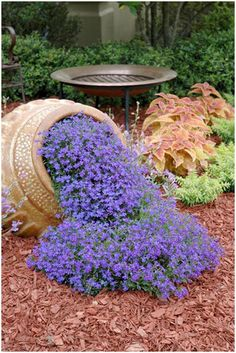 AUBRIETA ROYAL VIOLET, Rock Cress / Perennial / Deer Resistant / Ground Cover / Fragrant Flower Seeds Tried this Garden Design suggestion? We love the simplicity of this ref 5300371286 pin. Give it a go today! Garden Yard Ideas, Easy Garden, Garden Projects, Garden Pots, Garden Landscaping, Florida Landscaping, Landscaping Design, Backyard Ideas, Yard Design