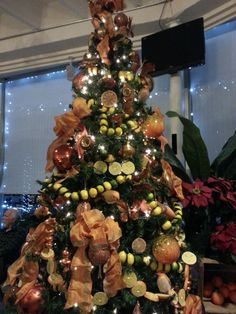 """This """"citrus"""" themed tree is apropos - it was found at our local landmark, The Citrus Tower!"""
